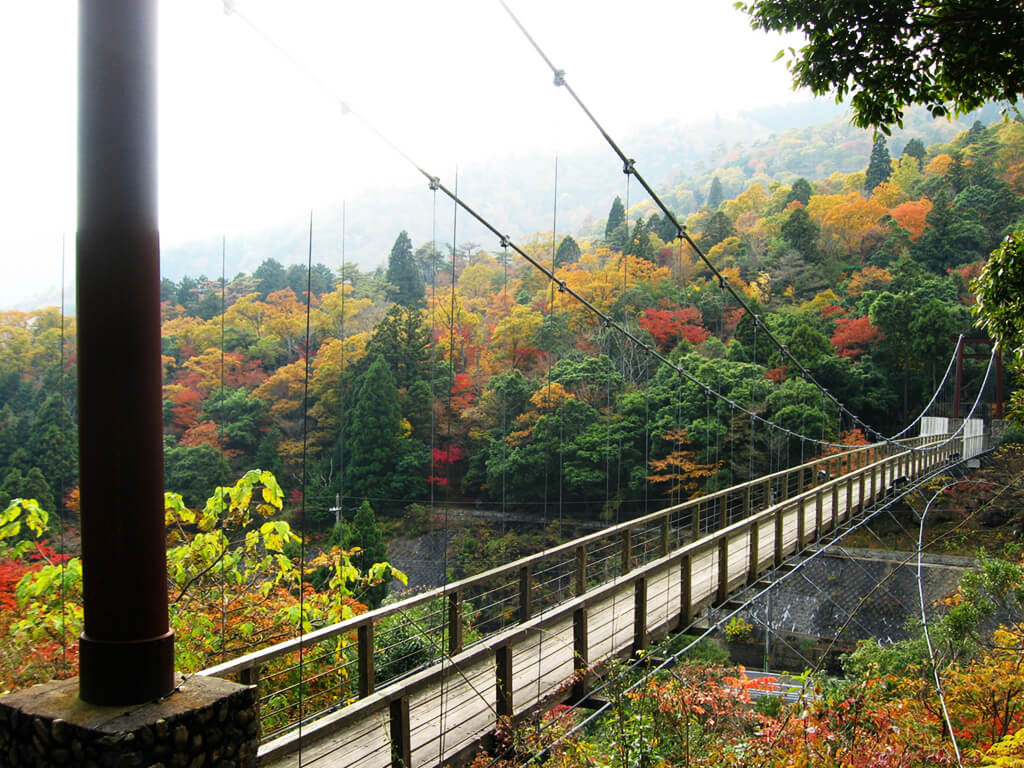 Shindoji bridge over Futasegawa mountain stream